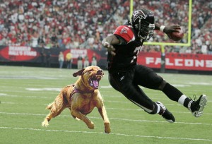 Michael Vick Hospitalized In Pit Bull Attack