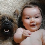 baby and puppy watching tv