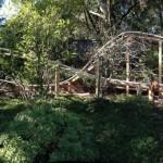 Dad_builds_coaster_Mercury_Will_Pembles_Coaster3