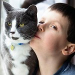 autistic-boy-saved-by-his-cat-tara