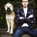 dog-owner-more-attractive-than-cat-owner6