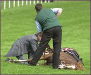 jockey-killed-hoax