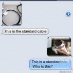 hilarious-text-responses6
