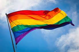 homosexual-marriage-victory