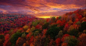 upstate-new-york-listed-as-best-place-to-view-fall-colors
