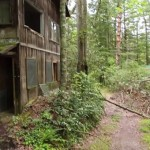 hidden-town-in-tennessee-woods2