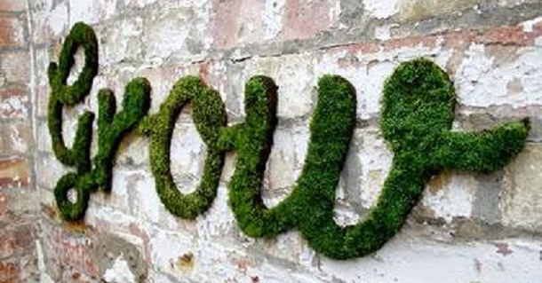cool-moss-DIY-project10