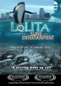 lolita-the-killer-whale