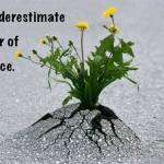 persistence-1