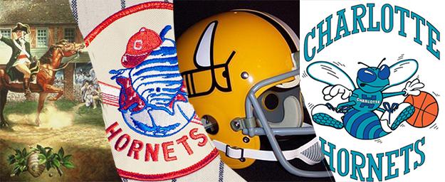 Charlotte Hornets Progression