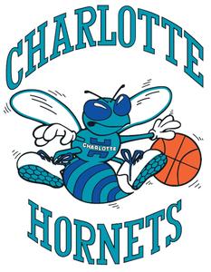 Charlotte_Hornets basketball