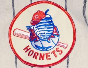 charlotte hornets baseball