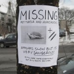 hilarious posters14