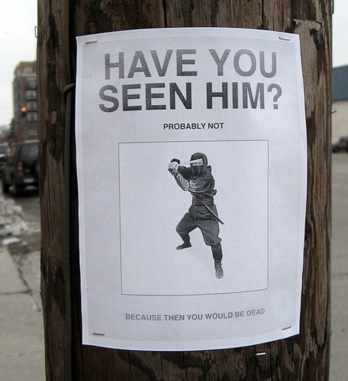 hilarious posters15