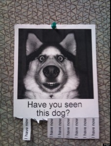 hilarious posters2