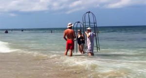 couple gets kicked off beach for using homemade shark cages