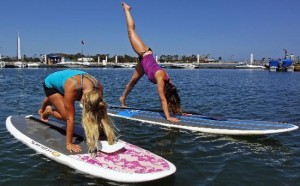 paddle-board-charleston
