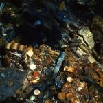 columbia shipwreck